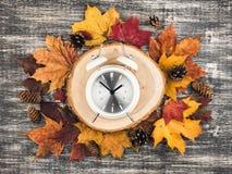 与黄色和红槭叶子的秋天背景 库存图片