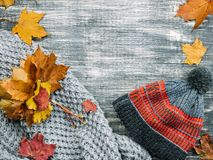 与黄色和红槭叶子的秋天背景 免版税图库摄影