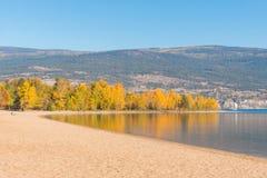 与黄色在镇静湖反映的秋叶和沙滩的树 库存图片