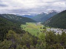 与黄色夏天花的谷和雪在d col ` izoard附近加盖了山在法国阿尔卑斯 库存图片