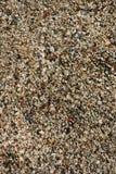 与黄色小卵石的抽象背景 圆的海多彩多姿的石头 库存图片