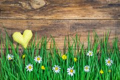 与黄色心脏的愉快的复活节或春天贺卡和盛开草甸有土气木背景 免版税库存图片
