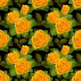 与黄色玫瑰的无缝的边界在黑背景 库存照片