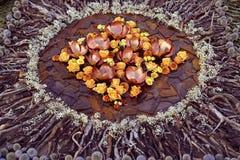 与黄色玫瑰的花火山口 图库摄影