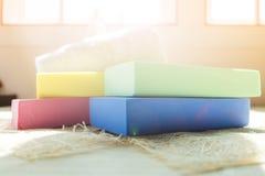 与黄色的五颜六色的海绵,绿色,蓝色,在毛皮安置的桃红色有 免版税库存图片