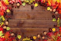 与黄色的秋天背景,与明亮的叶子、杉木锥体、栗子和莓果 构筑在经验丰富的木头的秋天收获与f 免版税库存照片