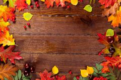 与黄色的秋天背景,与明亮的叶子、杉木锥体、栗子和莓果 构筑在经验丰富的木头的秋天收获与f 库存照片