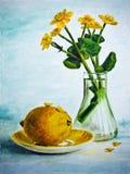 与黄色花和柠檬的静物画 免版税库存图片