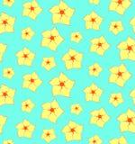 与黄色花的无缝的花卉样式 免版税库存图片