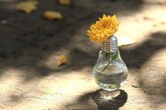 与黄色花的电灯泡 免版税库存图片