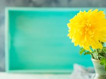 与黄色花的绿松石背景 卡片 库存图片