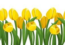 与黄色郁金香的水平的无缝的背景。 免版税库存照片