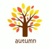 与黄色,橙色和红色叶子的图表秋天树 秋天季节的标志 库存例证