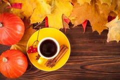 与黄色,红色叶子、南瓜、咖啡和guelder的秋天水平的横幅在棕色木背景上升了 概念为 免版税库存图片