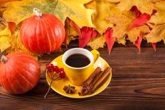 与黄色,红色叶子、南瓜、咖啡和guelder的秋天水平的横幅在棕色木背景上升了 免版税库存图片