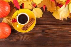 与黄色,红色叶子、南瓜、咖啡和guelder的秋天水平的横幅在棕色木背景上升了 免版税图库摄影