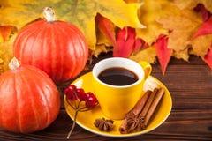 与黄色,红色叶子、南瓜、咖啡和guelder的秋天水平的横幅在棕色木背景上升了 免版税库存照片