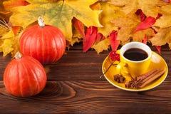 与黄色,红色叶子、南瓜、咖啡和guelder的秋天水平的横幅在棕色木背景上升了 图库摄影