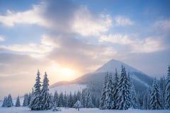 与黎明的冬天风景在山 免版税库存图片