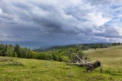 与黑暗的云彩的剧烈的风暴天空在绿色草甸和树木丛生的小山 免版税库存照片
