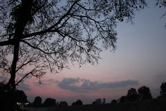 与黑暗的树的黑暗的天空墙纸的 免版税图库摄影