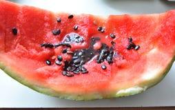 与黑种子的西瓜外壳 免版税库存图片