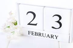 与黑色2月23日词的白色木日历与时钟和植物在白色木桌上 免版税库存照片