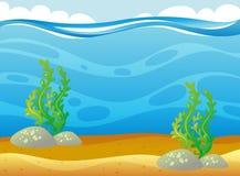 与水下的海草的海洋场面 皇族释放例证