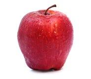 与水下落的红色苹果在白色 库存照片