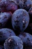 与水下落的蓝色葡萄 免版税库存照片