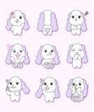 与9个不同姿态的逗人喜爱的小狗 皇族释放例证