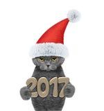 与2017个新年数字的逗人喜爱的圣诞老人猫 免版税图库摄影