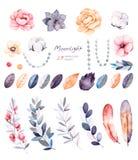 与29个水彩元素的冬天花卉收藏 库存例证