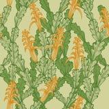 与仙人掌花的无缝的样式  图库摄影