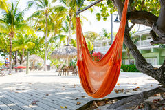 与轻便马车的热带手段渴望和吊床 库存照片