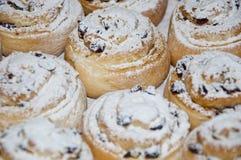 与结冰的圣诞节曲奇饼 库存照片