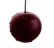 与水发光的滴的水多的李子  一个唯一紫色李子,隔绝在白色背景 自创汁液的莓果 库存照片