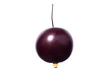 与水发光的滴的水多的樱桃  在白色背景隔绝的一棵唯一紫色樱桃 自创汁液的莓果 免版税库存图片