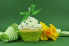 与黄水仙和条纹丝带的美丽的绿色装饰的杯形蛋糕 库存图片