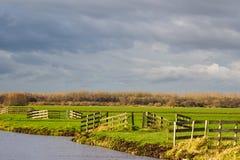 与水和树篱的风景 库存图片