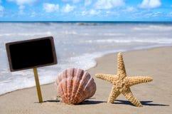 与贝壳和海星的标识牌 免版税库存照片