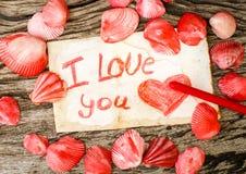 与贝壳和消息的情人节背景我爱你 库存照片