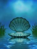 与贝壳和香蒲的海洋背景 免版税库存图片