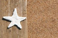 与贝壳的老木头在沙子 免版税库存图片