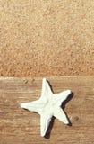 与贝壳的老木头在沙子 库存图片