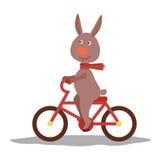 与围巾的逗人喜爱的野兔在运输 向量 免版税库存照片