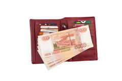 与货币和银行信用卡的持有人 免版税库存照片