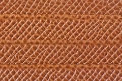 与水平线的浅褐色的皮革纹理 图库摄影