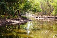 与水库的热带风景 免版税库存图片