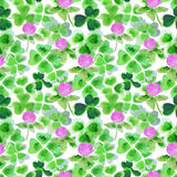 与水彩三叶草叶子和花的无缝的样式设计的 免版税库存照片